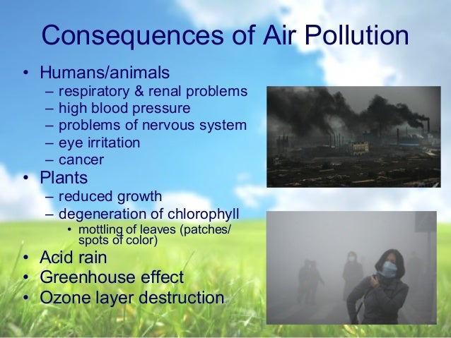 the uses and repercussions of fertilizers The effects of chemical fertilizers are not widely spoken about this is  the  biggest issue facing the use of chemical fertilizers is groundwater contamination.