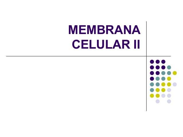 MEMBRANACELULAR II