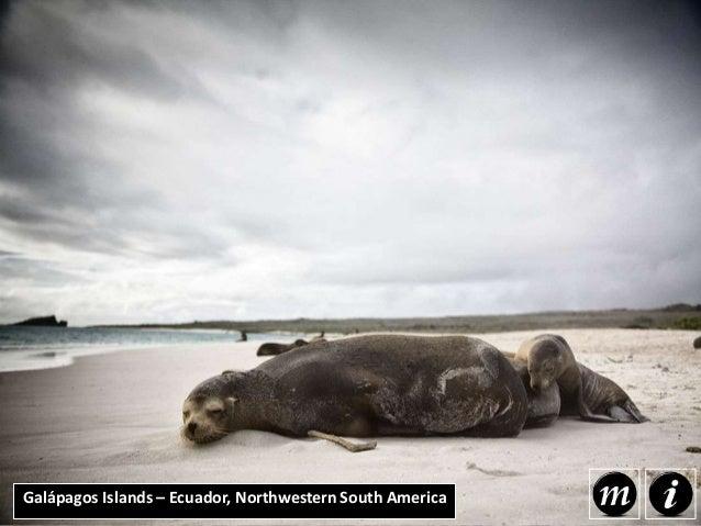 Galápagos Islands – Ecuador, Northwestern South America The Galapagos Islands are located off the coast of Ecuador and acc...
