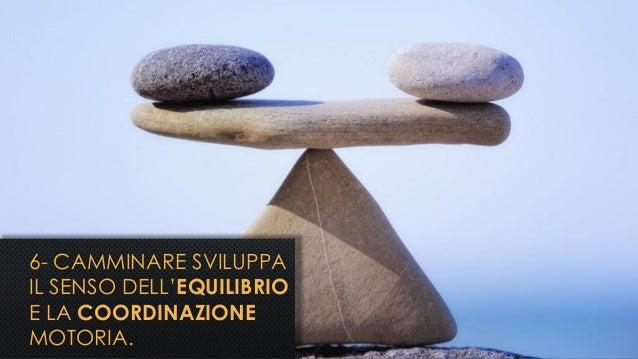 6- CAMMINARE SVILUPPA IL SENSO DELL'EQUILIBRIO E LA COORDINAZIONE MOTORIA.