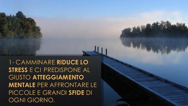 1- CAMMINARE RIDUCE LO STRESS E CI PREDISPONE AL GIUSTO ATTEGGIAMENTO MENTALE PER AFFRONTARE LE PICCOLE E GRANDI SFIDE DI ...