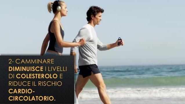 2- CAMMINARE DIMINUISCE I LIVELLI DI COLESTEROLO E RIDUCE IL RISCHIO CARDIO- CIRCOLATORIO.