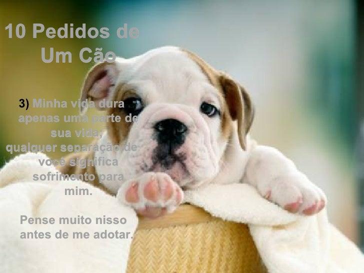 10 Pedidos de    Um Cão  3) Minha vida dura  apenas uma parte de        sua vida;qualquer separação de      você significa...