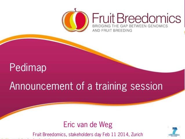 Pedimap  Announcement of a training session  Eric van de Weg PBA workshop, MSU JUNE' 10  1  Fruit Breedomics, stakeholders...