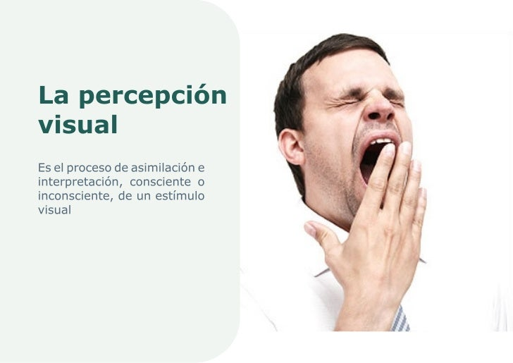 10. La Percepción Visual