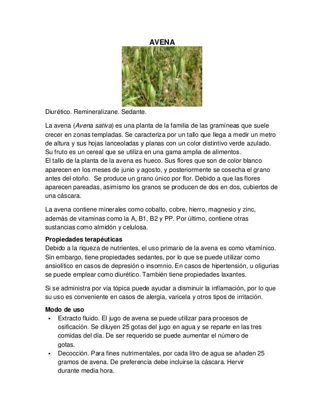 AVENA Diurético. Remineralizane. Sedante. La avena (Avena sativa) es una planta de la familia de las gramíneas que suele c...