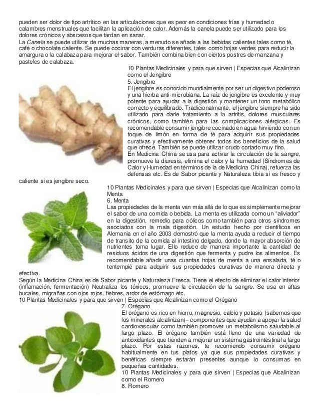 10 plantas medicinales y para que sirven for Tipos de hierbas medicinales