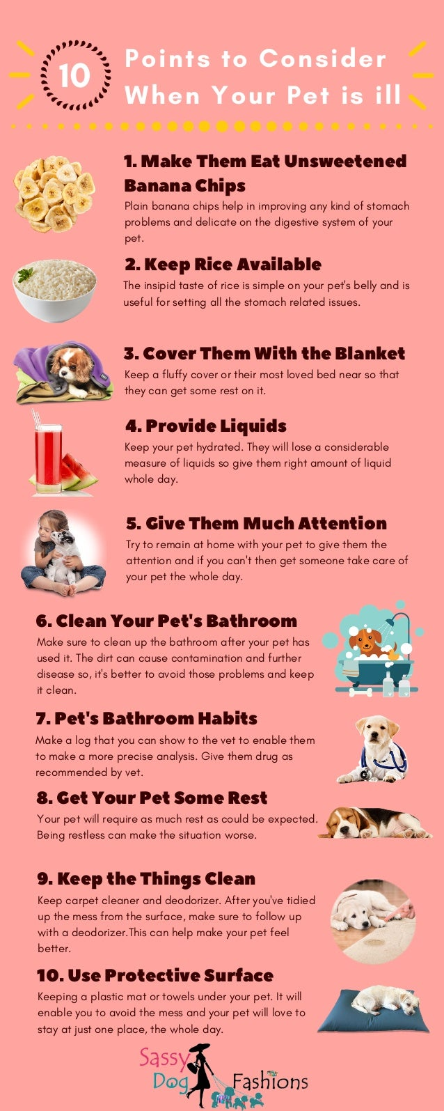 10 points to consider when your pet is ill!