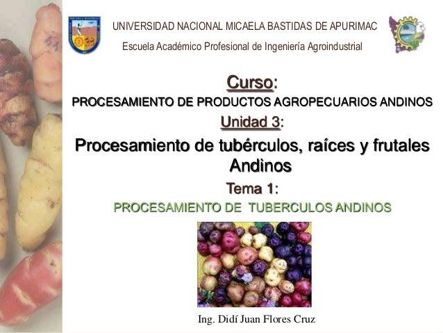 UNIVERSIDAD NACIONAL MICAELA BASTIDAS DE APURIMAC      Escuela Académico Profesional de Ingeniería Agroindustrial         ...