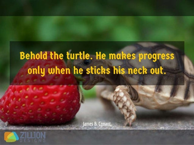 Behold the turtle. He makes progress only when he sticks his neck out. - James B. Conant