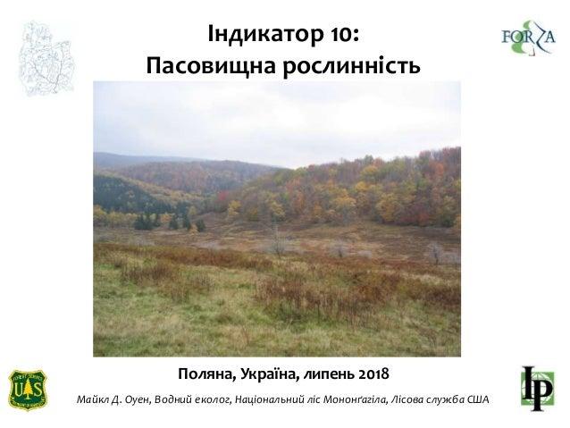Поляна, Україна, липень 2018 Індикатор 10: Пасовищна рослинність Майкл Д. Оуен, Водний еколог, Національний ліс Мононґагіл...