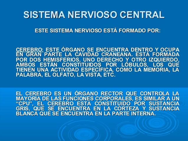 SISTEMA NERVIOSO CENTRALSISTEMA NERVIOSO CENTRAL ESTE SISTEMA NERVIOSO ESTÁ FORMADO POR:ESTE SISTEMA NERVIOSO ESTÁ FORMADO...