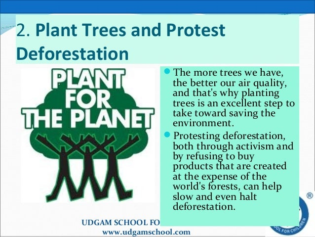 why should we conserve plants and animals essay 3 reasons why you should protect wildlife march 11 wildlife conservation is the attempt to protect endangered animal and plant species when we conserve and protect the natural habitat of wildlife species, we enrich our planet.