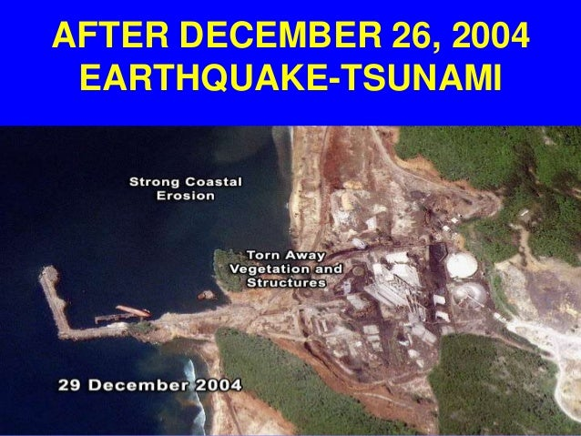 prevention measures for the 2004 indian tsunami The 2004 indian ocean tsunami led to a better understanding  implemented  into tsunami risk reduction measures are provided at the end of the article   both events occurred in regions were tsunami risk prevention mea.