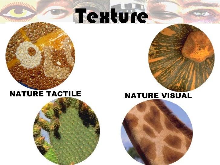 TextureNATURE TACTILE   NATURE VISUAL
