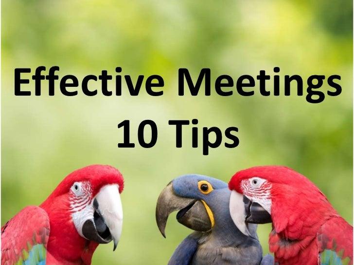 Effective Meetings      10 Tips