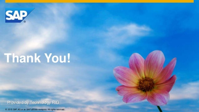 © 2015 SAP AG or an SAP affiliate company. All rights reserved. Thank You! Provided by Technology RIG