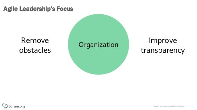 ©1993 – 2019 Scrum.org All Rights Reserved Agile Leadership's Focus Organization Remove obstacles Improve transparency