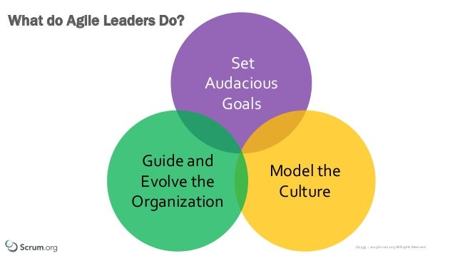 ©1993 – 2019 Scrum.org All Rights Reserved Set Audacious Goals What do Agile Leaders Do? Model the Culture Guide and Evolv...