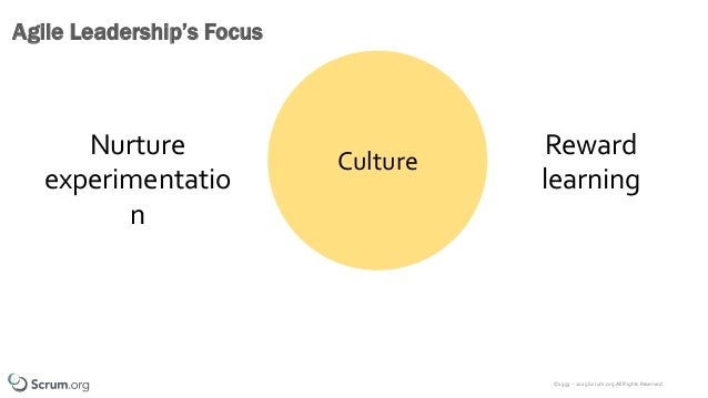 ©1993 – 2019 Scrum.org All Rights Reserved Agile Leadership's Focus Culture Nurture experimentatio n Reward learning