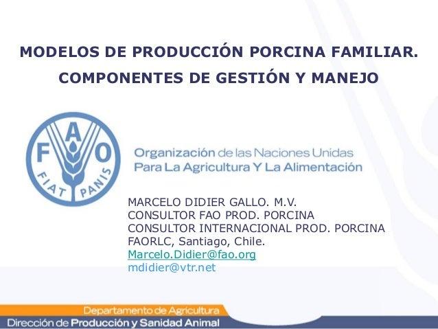 MODELOS DE PRODUCCIÓN PORCINA FAMILIAR.   COMPONENTES DE GESTIÓN Y MANEJO          MARCELO DIDIER GALLO. M.V.          CON...