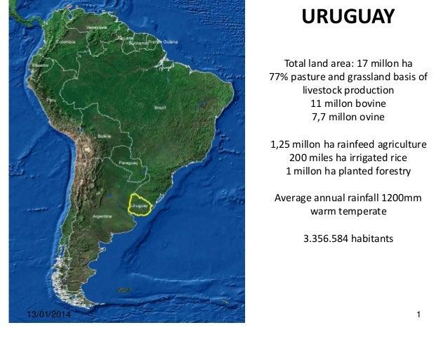 URUGUAY Total land area: 17 millon ha 77% pasture and grassland basis of livestock production 11 millon bovine 7,7 millon ...