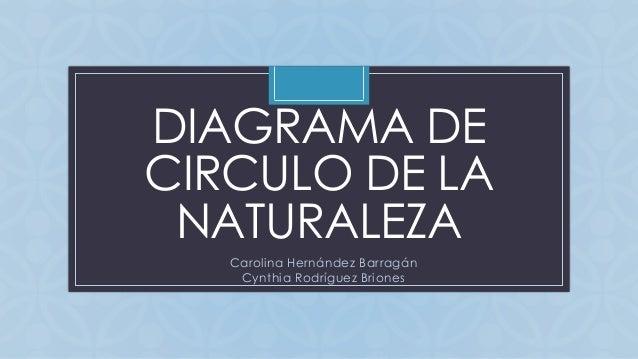 C DIAGRAMA DE CIRCULO DE LA NATURALEZA Carolina Hernández Barragán Cynthia Rodríguez Briones