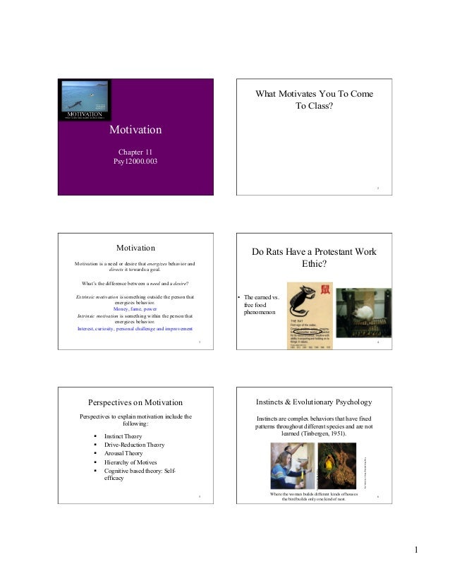 1 1 Motivation Chapter 11 Psy12000.003 2 What Motivates You To Come To Class? 3 Motivation Motivation is a need or desire ...