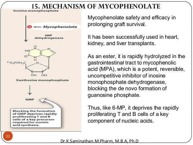 31 Mycophenolate safety and efficacy in prolonging graft survival. It has been successfully used in heart, kidney, and liv...
