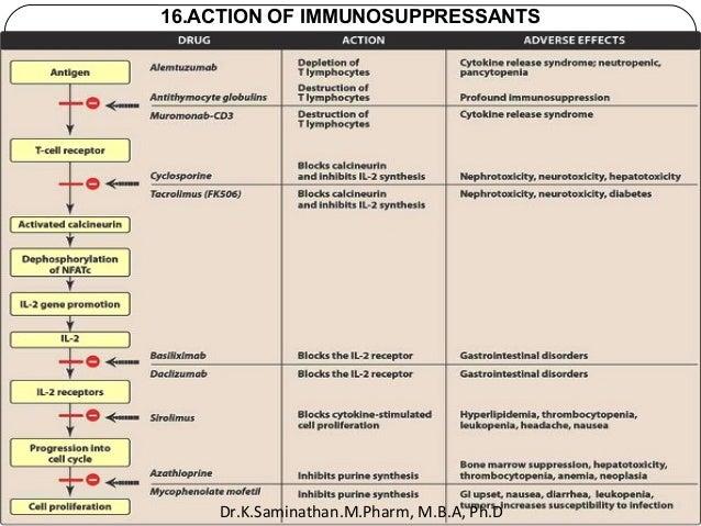 32 16.ACTION OF IMMUNOSUPPRESSANTS Dr.K.Saminathan.M.Pharm, M.B.A, Ph.D