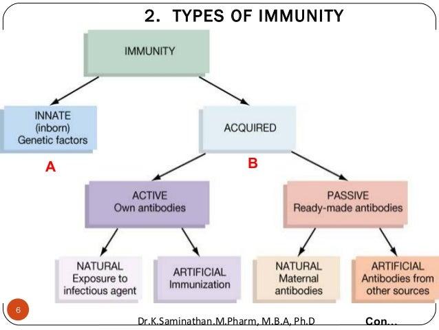2. TYPES OF IMMUNITY Con… A B 6 Dr.K.Saminathan.M.Pharm, M.B.A, Ph.D