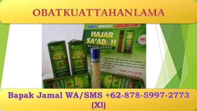 Promosi Wa Sms Jamal 62 878 5997 2773 Xl Obat Kuat Penis
