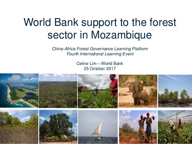 World Bank support to the forest sector in Mozambique China-Africa Forest Governance Learning Platform Fourth Internationa...