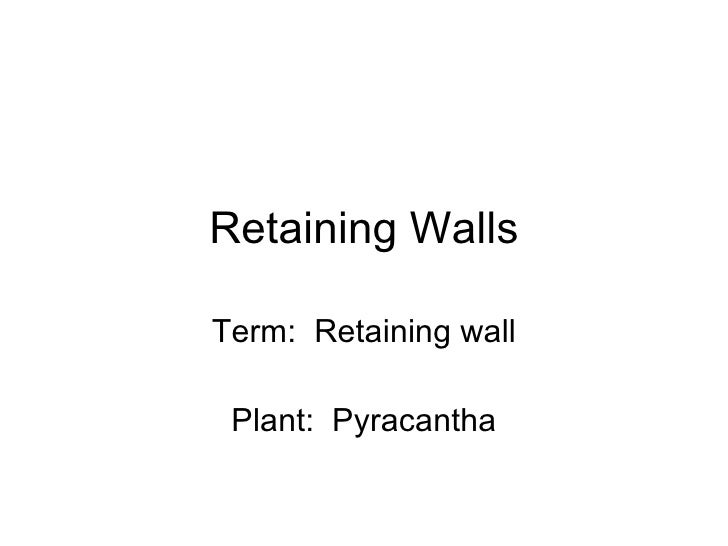 Retaining Walls Term:  Retaining wall Plant:  Pyracantha