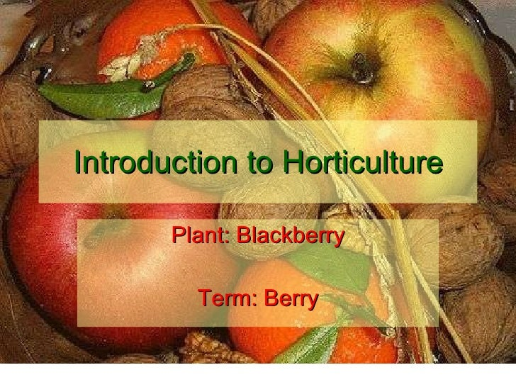 Introduction to Horticulture Plant: Blackberry Term: Berry