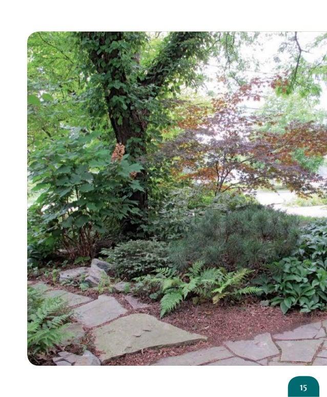 Native Woodland Plants