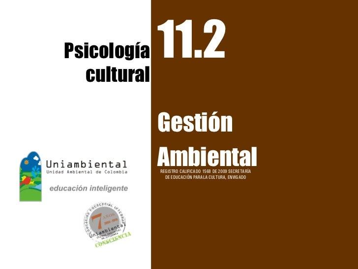 Psicología   11.2  cultural             Gestión             Ambiental             REGISTRO CALIFICADO 1568 DE 2009 SECRETA...
