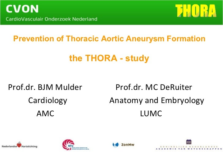Prevention of Thoracic Aortic Aneurysm Formation the THORA - study   Prof.dr. BJM Mulder     Prof.dr. MC DeRuiter Cardiolo...