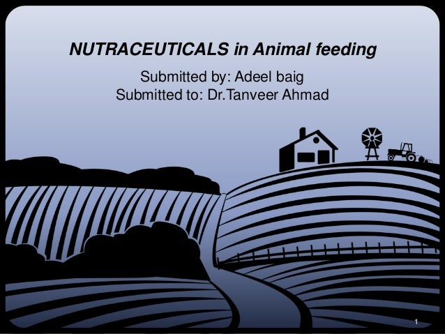 NUTRACEUTICALS in Animal feeding       Submitted by: Adeel baig    Submitted to: Dr.Tanveer Ahmad                         ...