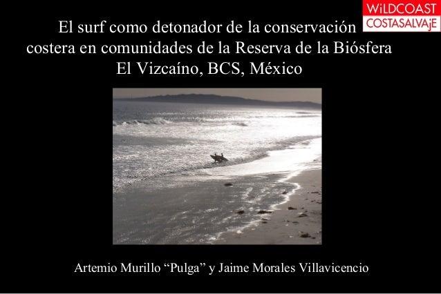 El surf como detonador de la conservacióncostera en comunidades de la Reserva de la BiósferaEl Vizcaíno, BCS, MéxicoArtemi...