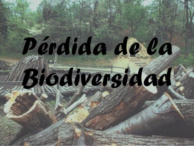 Pérdida de laBiodiversidad
