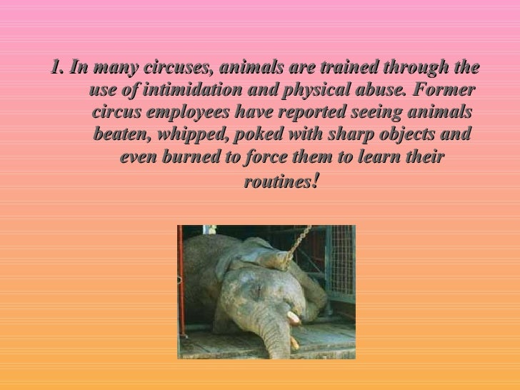 facts of animal abuse in circus This month, ringling bros and barnum & bailey circus, the nation's  citing  abuse and misconduct of the highly intelligent animals at the.