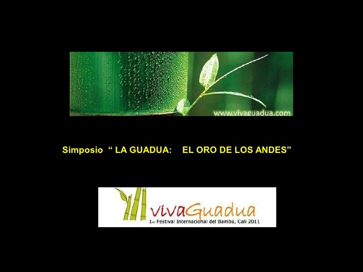 """Simposio """" LA GUADUA:   EL ORO DE LOS ANDES"""""""