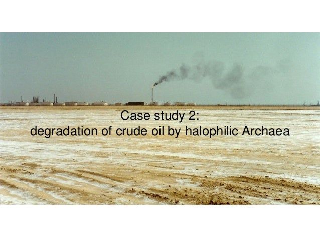 oil degrading bacteria history of and processes Full-text paper (pdf): characterization and potentials of indigenous oil-degrading bacteria inhabiting the rhizosphere of wild oat (avena fatua l) in south west of iran.