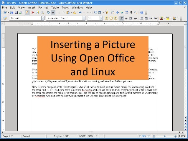 Inserting a Picture Using Open Office and Linux