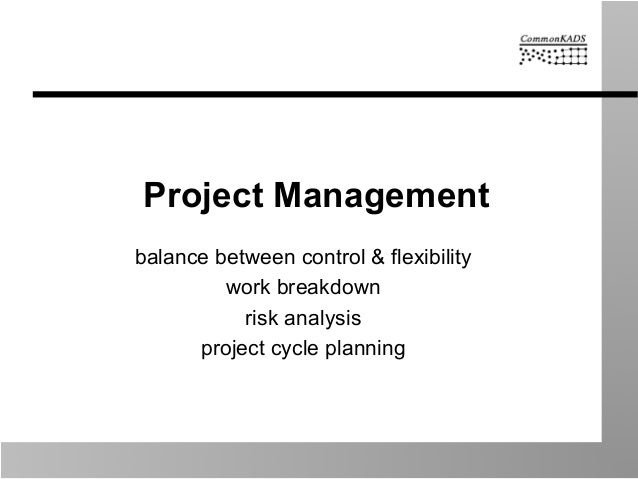 Project Management balance between control & flexibility work breakdown risk analysis project cycle planning