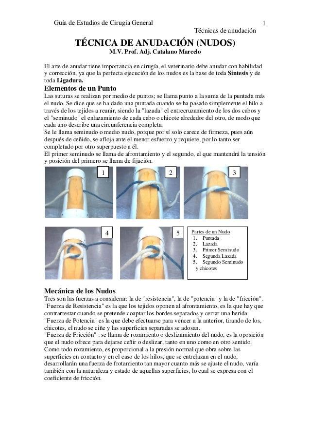 Guía de Estudios de Cirugía GeneralTécnicas de anudación1TÉCNICA DE ANUDACIÓN (NUDOS)M.V. Prof. Adj. Catalano MarceloEl ar...
