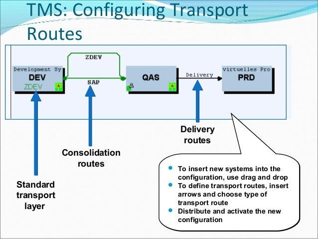 sap transport diagram auto electrical wiring diagram u2022 rh 6weeks co uk