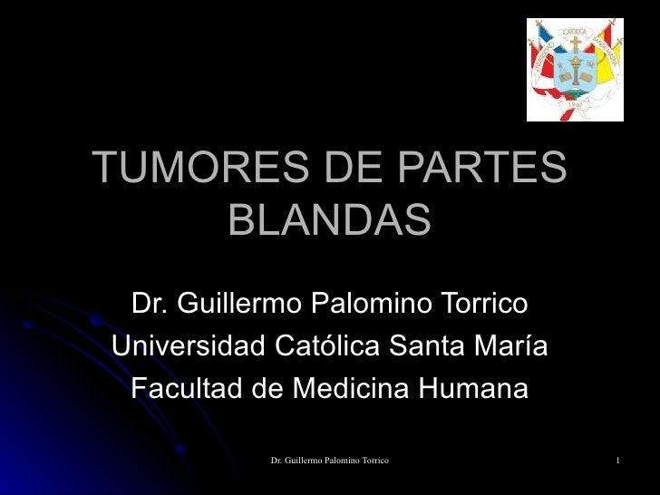 TUMORES DE PARTES BLANDAS Dr. Guillermo Palomino Torrico Universidad Católica Santa María Facultad de Medicina Humana