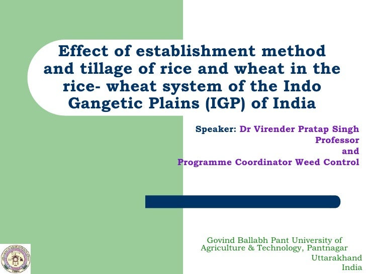 Effect of establishment methodand tillage of rice and wheat in the  rice- wheat system of the Indo   Gangetic Plains (IGP)...